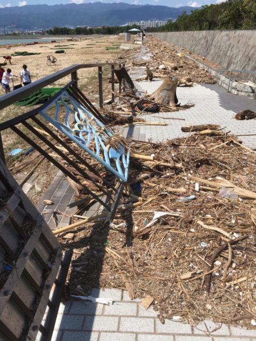 台風21号通過翌日の甲子園浜、9月5日撮影